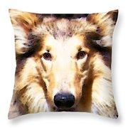 Collie Dog Art - Sunshine Throw Pillow by Sharon Cummings
