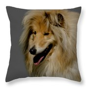Collie Dog Throw Pillow by Linsey Williams