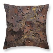 Color of Steel 2 Throw Pillow by Fran Riley
