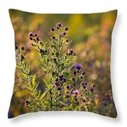 Colorful Bouquet Of Purple Aster Flowers Throw Pillow by Christina Rollo