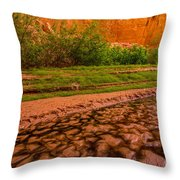 Colorful Streambed - Coyote Gulch - Utah Throw Pillow by Gary Whitton