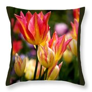 Colorful Tulips Throw Pillow by Rona Black