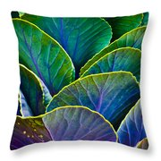 Colors of the Cabbage Patch Throw Pillow by Christi Kraft