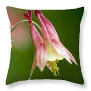 Columbine Throw Pillow by Steven Ralser