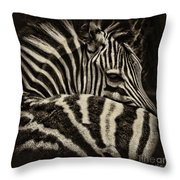 Comfort Throw Pillow by Andrew Paranavitana