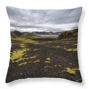 Coming And Going Throw Pillow by Jon Glaser