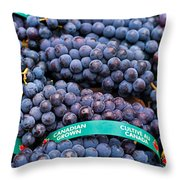 Concord Grapes Throw Pillow by Mary  Smyth