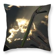 Conjuring Throw Pillow by Maurice Beebe