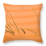 Coral Pink Sands 1 Throw Pillow by Adam Romanowicz