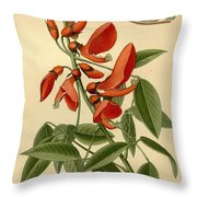 Coral Tree Throw Pillow by Philip Ralley