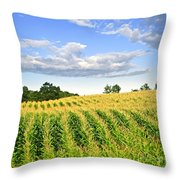 Corn Field Throw Pillow by Elena Elisseeva