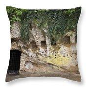 Cornwallis Cave Throw Pillow by Teresa Mucha