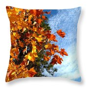 Country Color 30 Throw Pillow by Will Borden
