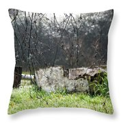 Country Diamonds Throw Pillow by Pamela Patch
