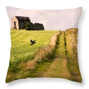 Country Lane Throw Pillow by Amanda And Christopher Elwell