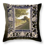 Country Lane Reflected In Mirror Throw Pillow by Amanda And Christopher Elwell