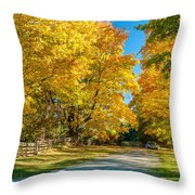 Country Lane Throw Pillow by Steve Harrington