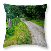Country Road Throw Pillow by Frozen in Time Fine Art Photography