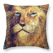 Courage Throw Pillow by Doug Kreuger