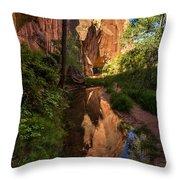 Coyote Gulch Canyon Reflection - Utah Throw Pillow by Gary Whitton