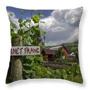 Crane Creek Vineyard Throw Pillow by Debra and Dave Vanderlaan