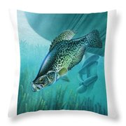 Crappie And Boat Throw Pillow by JQ Licensing