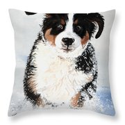 Crazy for Snow Throw Pillow by Liane Weyers