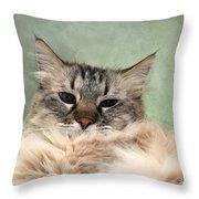 Creme De Menthe Throw Pillow by Karen Slagle