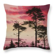 Crimson Sunset Splendor Throw Pillow by James Williamson