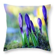 Crocus Throw Pillow by Hannes Cmarits