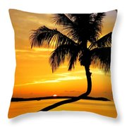 Crooked Palm Throw Pillow by Karen Wiles