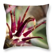 Crown Throw Pillow by Kelley King