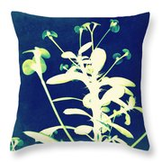 Crown of Thorns - Blue Throw Pillow by Shawna  Rowe