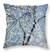 Crystal Beads Throw Pillow by Kathleen Struckle