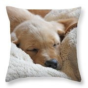 Cuddling Labrador Retriever Puppy Throw Pillow by Jennie Marie Schell