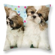 Curious Twins Throw Pillow by Greg Cuddiford