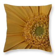 Curly Mum Throw Pillow by Susan Candelario