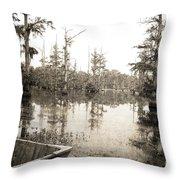 Cypress Swamp Throw Pillow by Scott Pellegrin