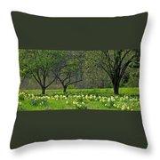 Daffodil Meadow Throw Pillow by Ann Horn