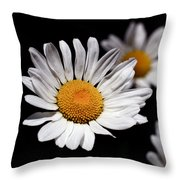 Daisies Throw Pillow by Rona Black