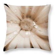 Daisy Dream Raindrops Sepia Throw Pillow by Jennie Marie Schell