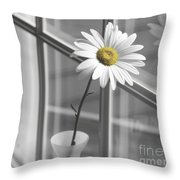 Daisy In The Window Throw Pillow by Diane Diederich