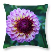 Dalhias At The Gorge White House In Hood River Oregon Throw Pillow by Jeff Swan