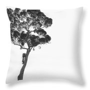 Damn  Missed Again Throw Pillow by Mike McGlothlen