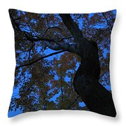 Dancing Throw Pillow by Juergen Roth
