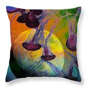 Dark Side Of The Moon 5D24939 Painterly m56 Throw Pillow by Wingsdomain Art and Photography
