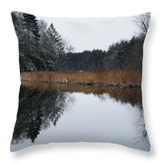 December Landscape Throw Pillow by Luke Moore