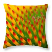 Deciphering Close Throw Pillow by Christina Rollo