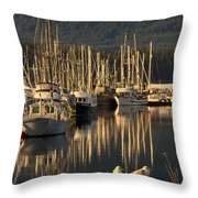 Deep Bay Throw Pillow by Randy Hall