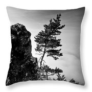 Defiant Throw Pillow by Davorin Mance